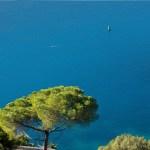 Découvrez Nice et ses côtes grâce à la location de bateau sans permis!