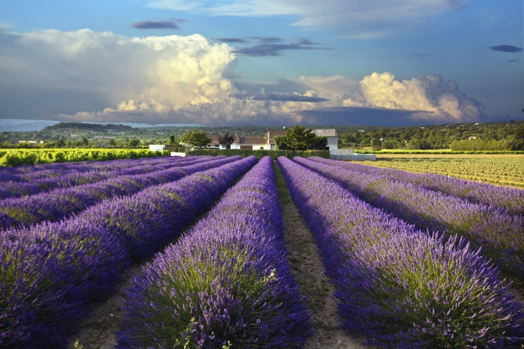 Luxury Locales The French Countryside  Rental Escapes