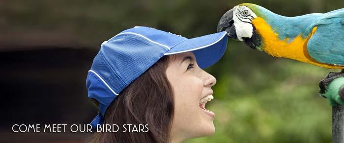 https://i0.wp.com/www.rentalmobilbali.net/wp-content/uploads/2012/01/Taman-Burung-Bali.jpg