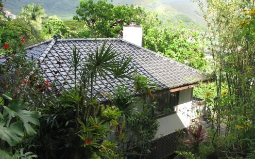 New Manoa Hillside