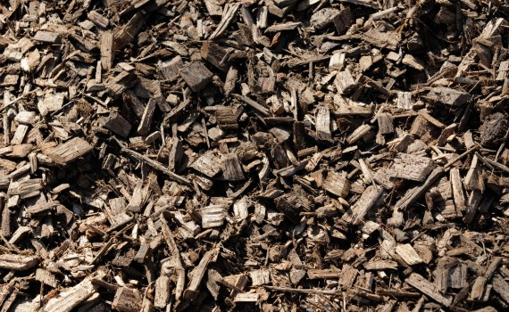 Why you should use mulch in your landscape