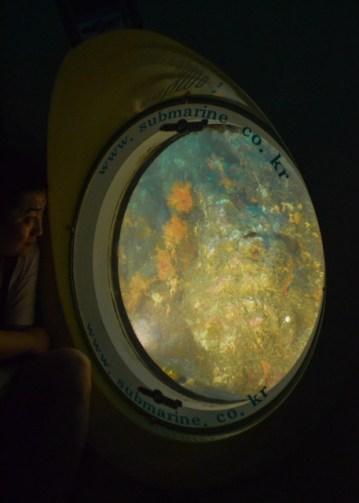 Récifs sous-marins