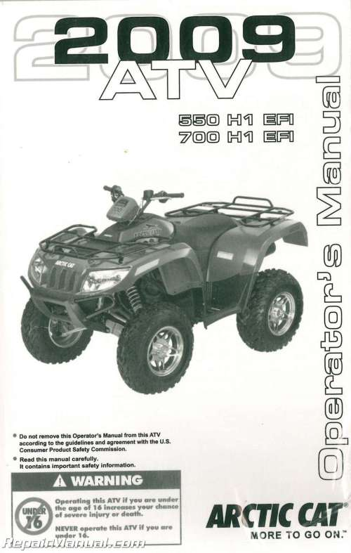 small resolution of 2009 arctic cat