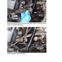 2008 Kawasaki Brute Force 750 Wiring Diagram 1966 Chevelle 650 2005 Get Free