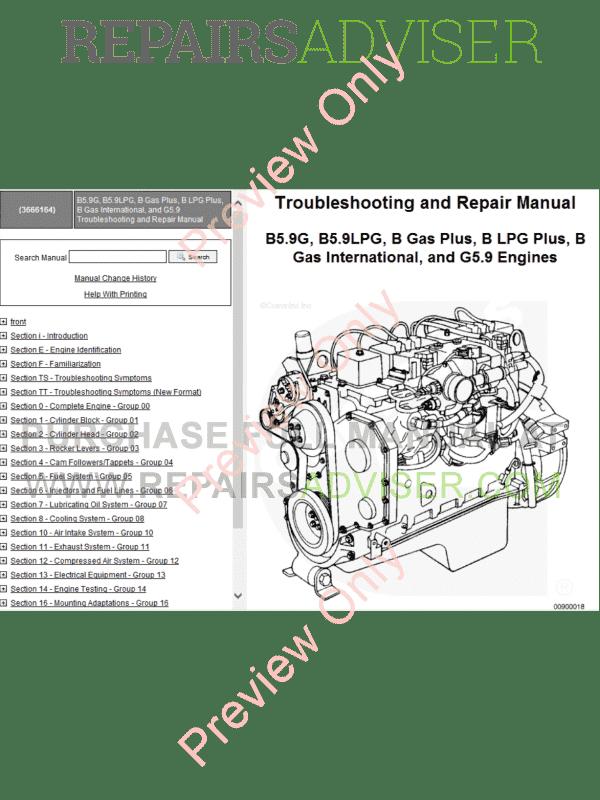 Cummins Mechanical Gas G5.9, G8.3, G855 G14-50 K19/KTA38GC PDF