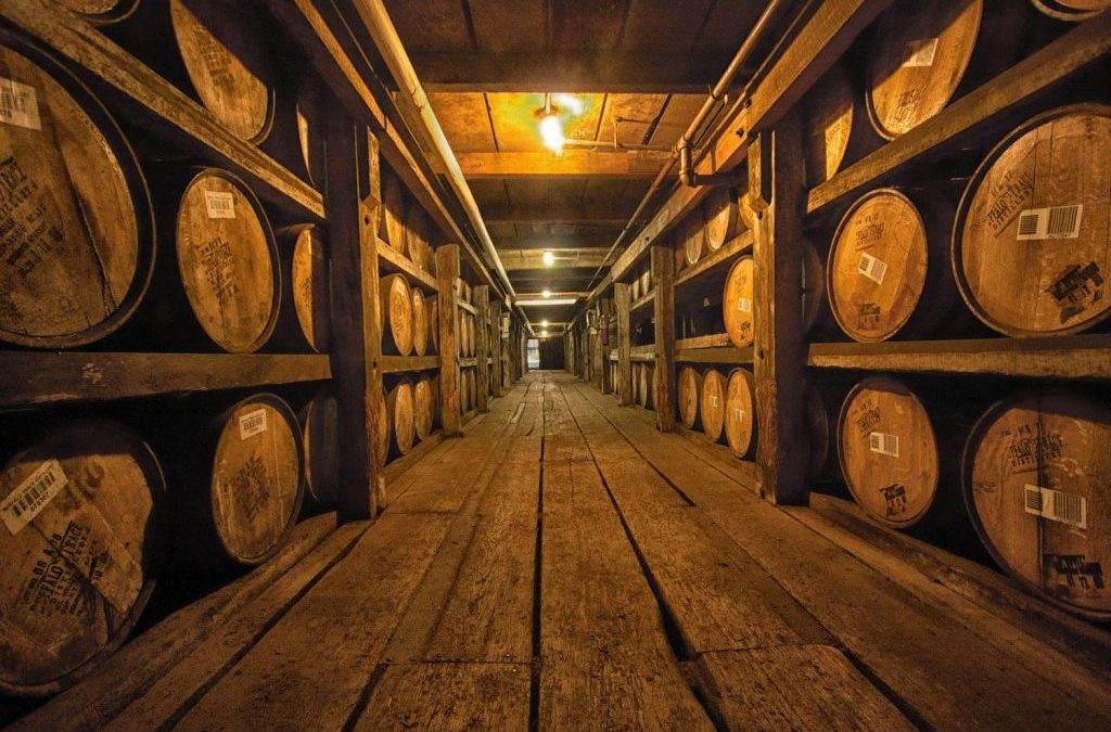 Βουτιά στον μαγικό κόσμο των whiskies!!