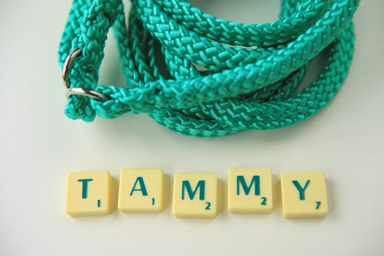 tammy_web2