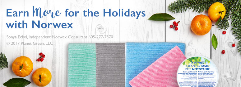 earn-holiday-cash-norwex