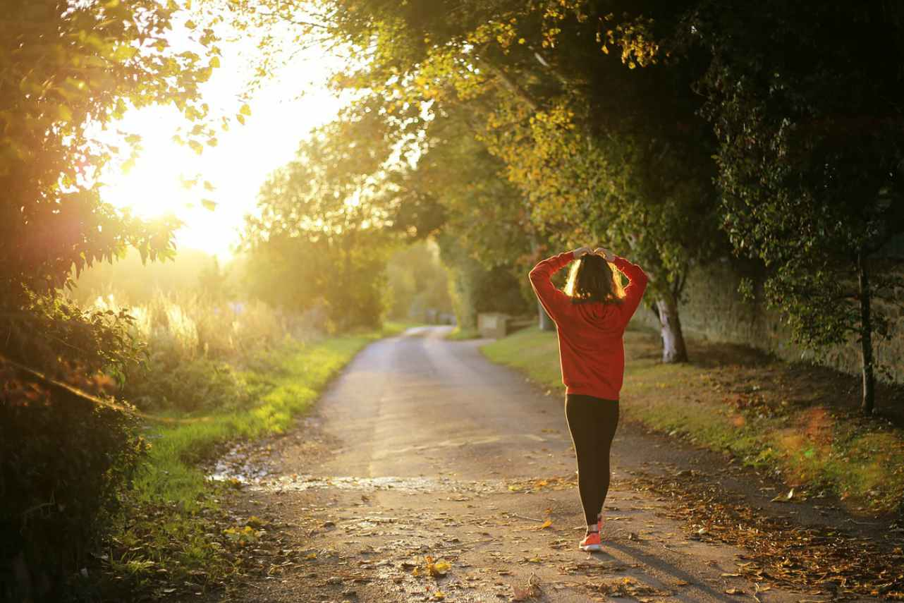 An image of a woman walking along a tree lined path into the sunrise