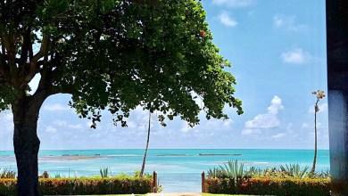 Photo of Praia de Ipioca. Foto: Carlos Maranhão
