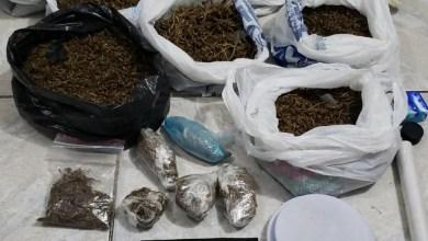 Photo of Jovens são presos suspeitos tráfico de drogas em Maceió