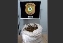 Photo of AQUI NÃO! homem que trazia droga de Pernambuco para Alagoas é preso em operação integrada