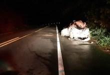 Photo of Motorista fica ferido após carro bater em árvore e capotar na BR-104, em Braquinha