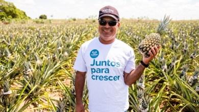 Photo of DIA DO AGRICULTOR: produtores do estado conquistam novos mercados com o Alagoas Maior