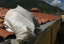 Photo of IML de Arapiraca confirma que menina encontrada dentro de um saco foi morta por estrangulamento