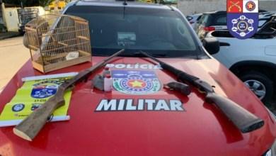 Photo of SEGURANÇA: PM apreende armas, drogas, pássaro silvestre e registra prisões por violência doméstica