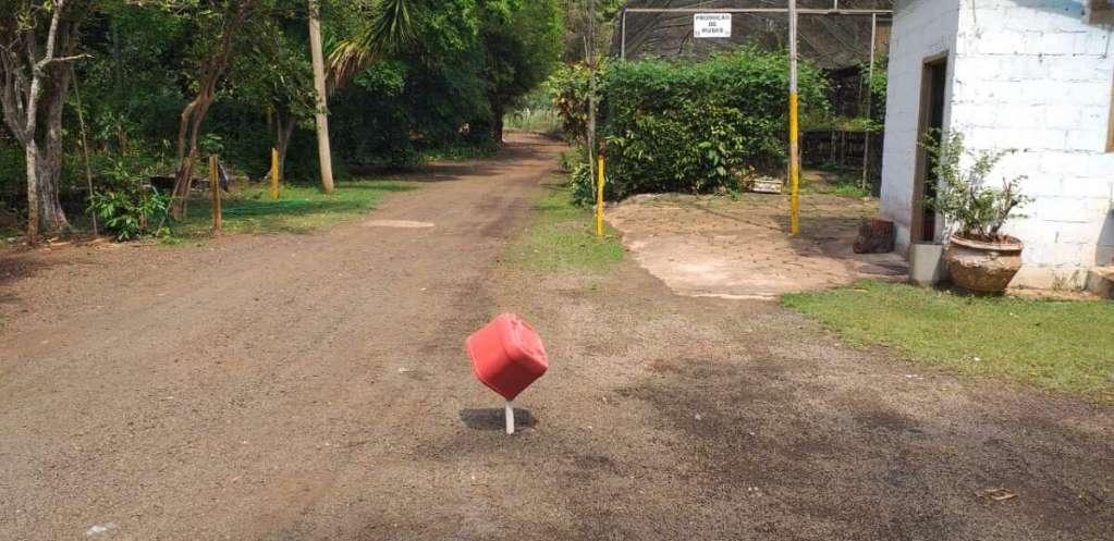 Duto de águas pluviais passa por área de preservação permanente no Horto Florestal