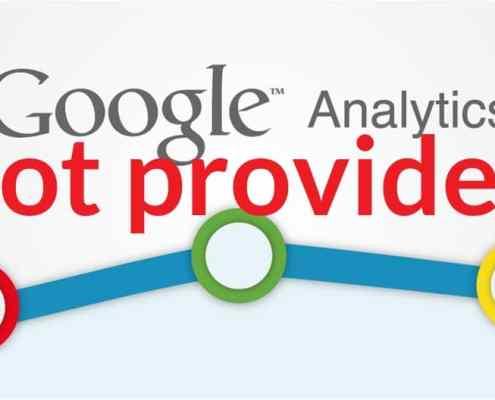 Google '(Not Provided)' Keywords