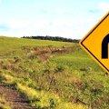 Migliori tecniche per recuperare il traffico perduto sul sito | Report Traffico