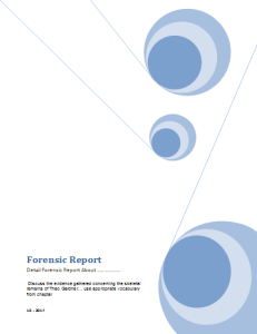 Forensic Report Template
