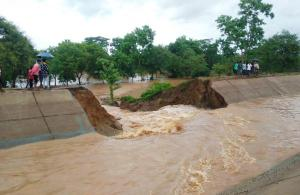 Breach in newly built Indravati lift canal destroys 100 acres of paddy crops in Odisha