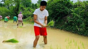 Lovlina Borgohain's inspirational journey: From helping her father in paddy field, to an Olympic bronze