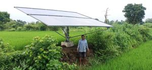 Sufficient income from solar energy from paddy and vegetable crops
