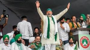 Uttar Pradesh: A wild from western UP