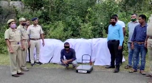 Ganja worth Rs 50 lakh seized in Odisha's Ganjam, 1 held