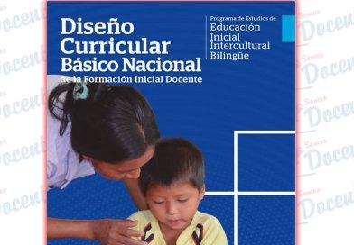 Diseño curricular Básico Nacional de la Formación Inicial Docente : programa de estudios de Educación Inicial Intercultural Bilingüe