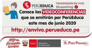 PERÚEDUCA EN VIVO: Conoce las VIDEOCONFERENCIAS que se emitirán por PerúEduca este mes de junio 2020