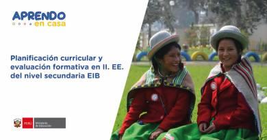 La planificación curricular y evaluación formativa en II.EE. del nivel Secundaria EIB (05/03)