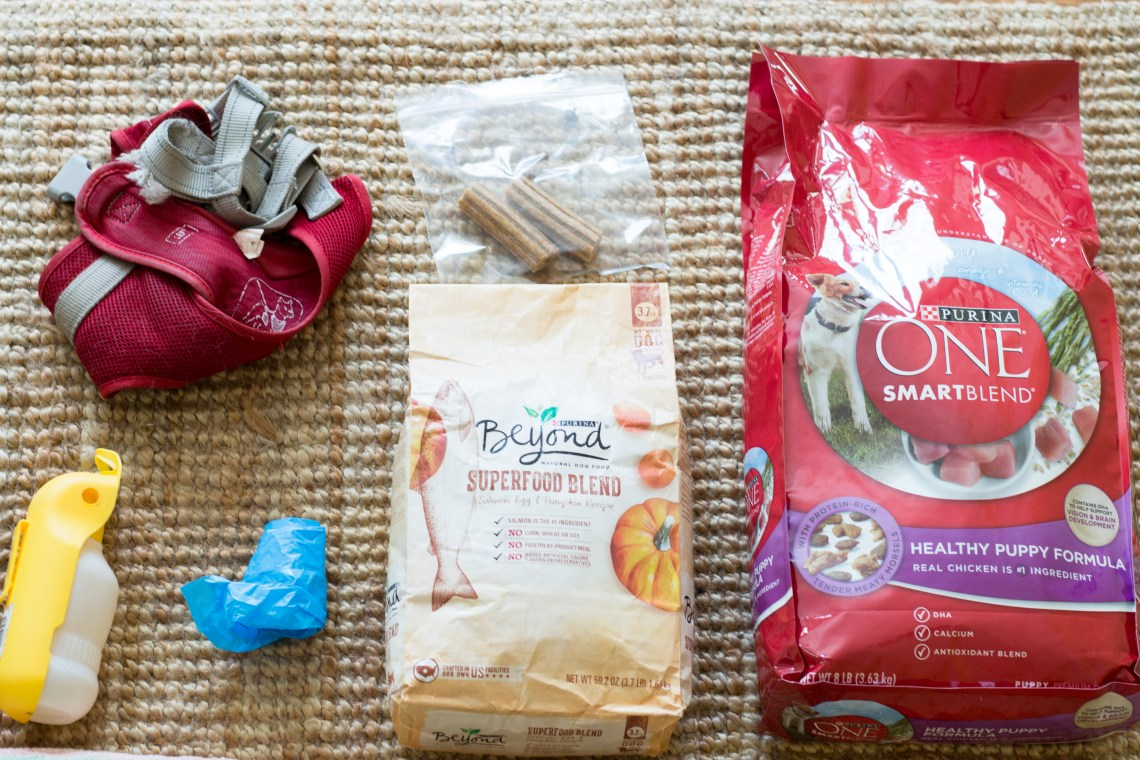 What's in my Dogs' Camping Bag
