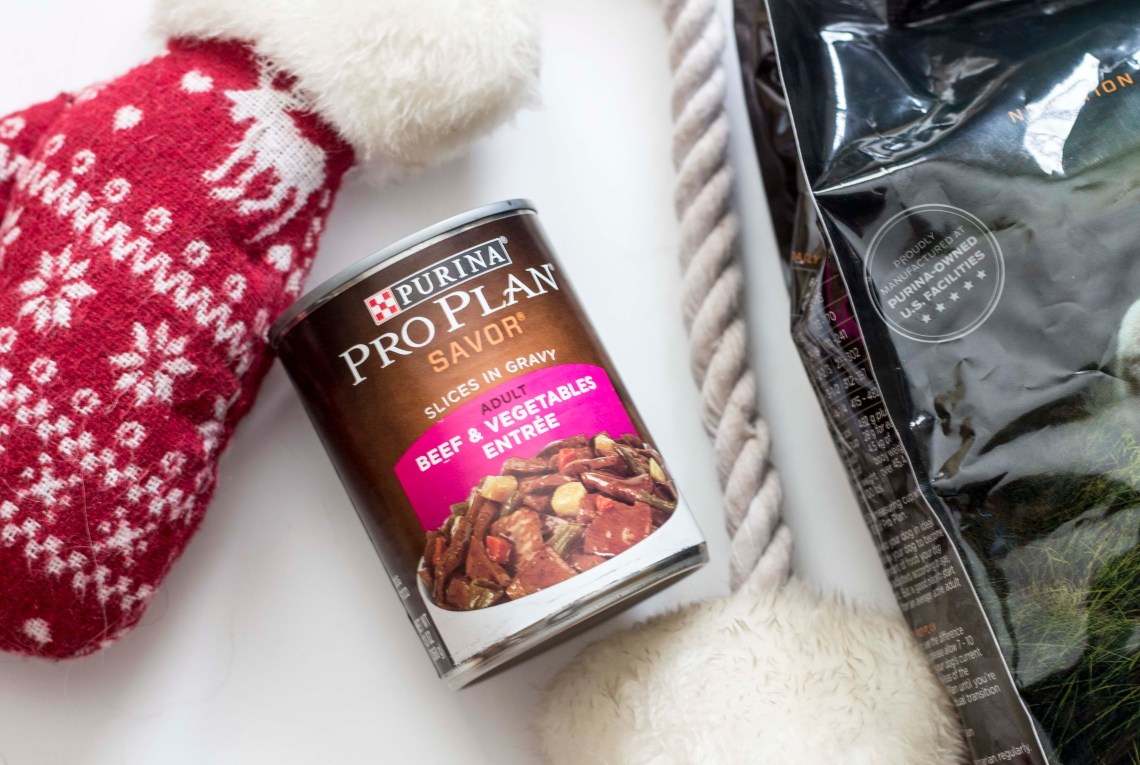 Keeping my dogs healthy with a specialized meal plan for the holidays