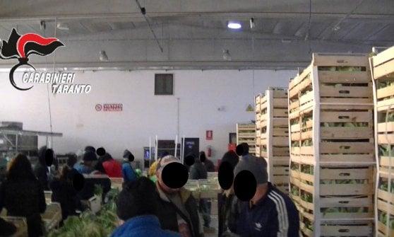 Taranto, un euro al giorno a 35 braccianti per 17 ore: arrestati imprenditore e caporale