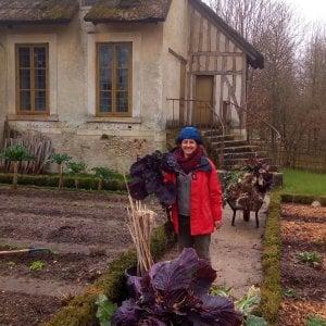 Giardiniera A Versailles La Storia Del Mio Riscatto Dopo Il