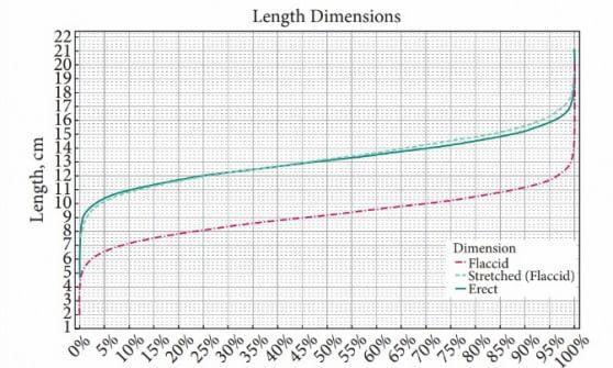 Dimensioni del pene, ora c'è uno standard condiviso