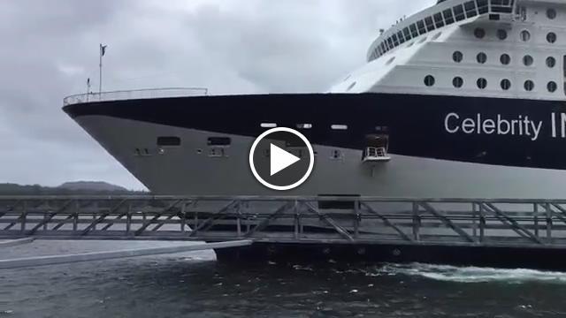 Alaska gigante del mare sbaglia attracco nave da crociera contro il molo  Video TvZap