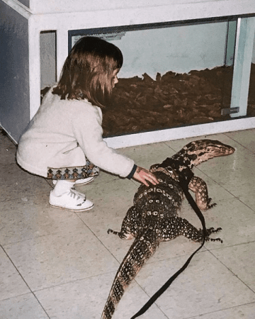 Young girl petting an Asian water monitor at Prehistoric Pets - ReptiFiles
