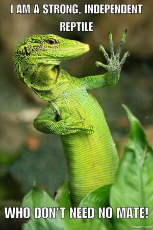 strong independent lizard who don't need no mate - meme about reptile breeding