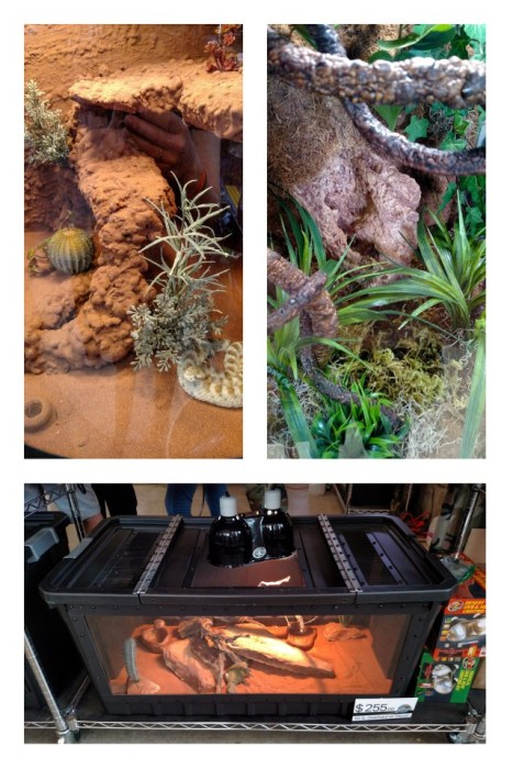 Terrarium Art products at the Spring 2017 Wasatch Reptile Expo