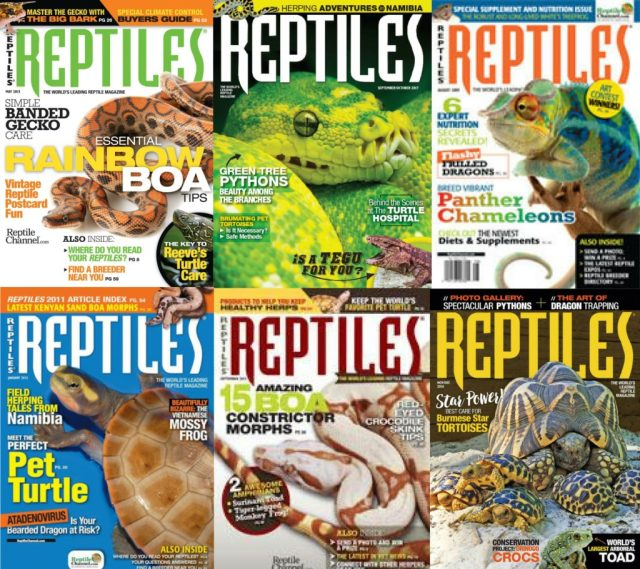 Christmas 2017 reptile gifts — Subscription to Reptiles Magazine