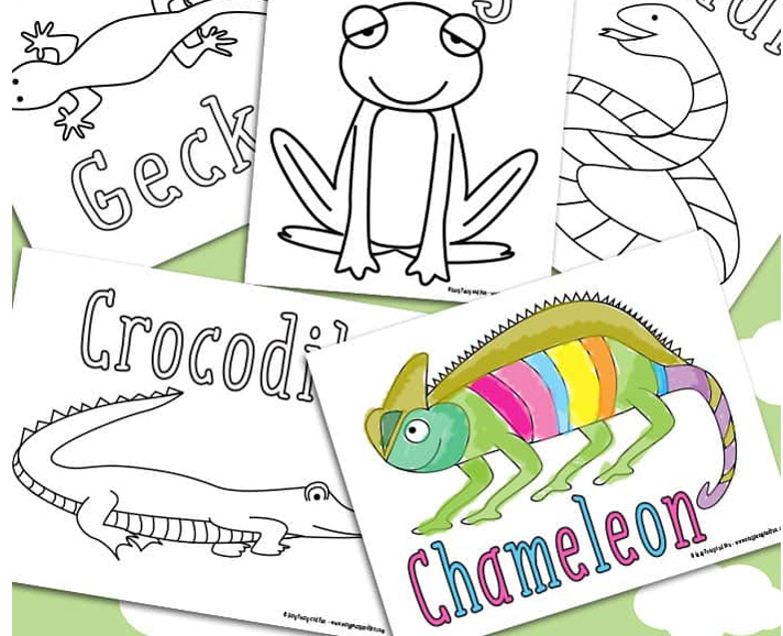 Free Reptile Coloring Pages From Easy Peasy And Fun Reptiles Magazine