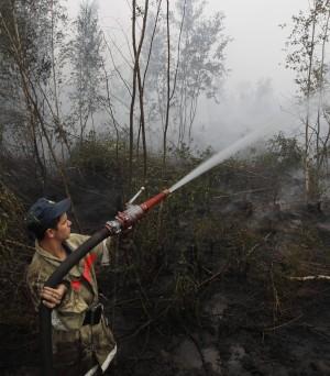 """La Russia divorata dalle fiamme Medvedev: """"Una tragedia enorme"""""""