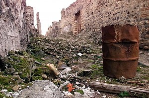 Degrado e sprechi Pompei senza guida da 6 mesi