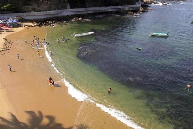 Acapulco, migliaia di sardine invadono la spiaggia
