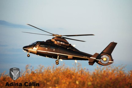 Aerospatiale - AS365 Dauphin II