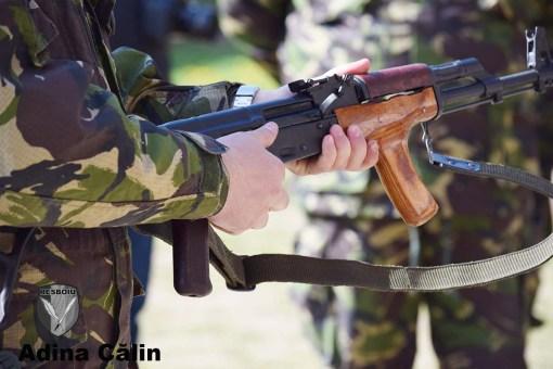 Prezentare arma 4