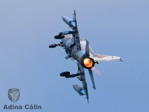 MiG 21 BOBAS (12)