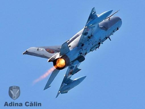 MiG 21 BOBAS (8)